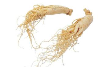 Pharmaceutical Ginseng Extract