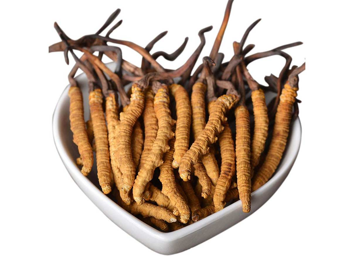 Cordyceps Mycelia Powder